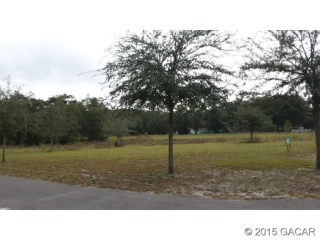 3621 Frederick Avenue, Bell, FL 32619 (MLS #369287) :: Florida Homes Realty & Mortgage