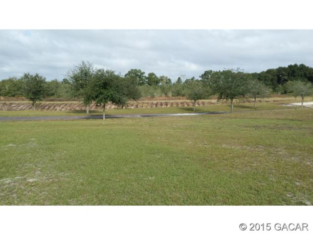 3629 Durden Avenue, Bell, FL 32619 (MLS #369288) :: Bosshardt Realty