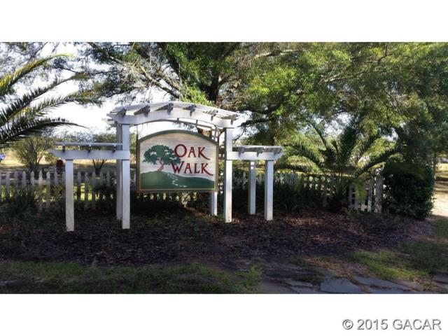 3533 Frederick Avenue, Bell, FL 32619 (MLS #369324) :: Bosshardt Realty