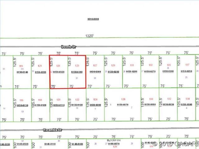 123-5 Desoto Drive, Florahome, FL 32140 (MLS #370181) :: Pepine Realty