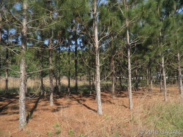 00 Vacant Lot, High Springs, FL 32643 (MLS #371260) :: Bosshardt Realty