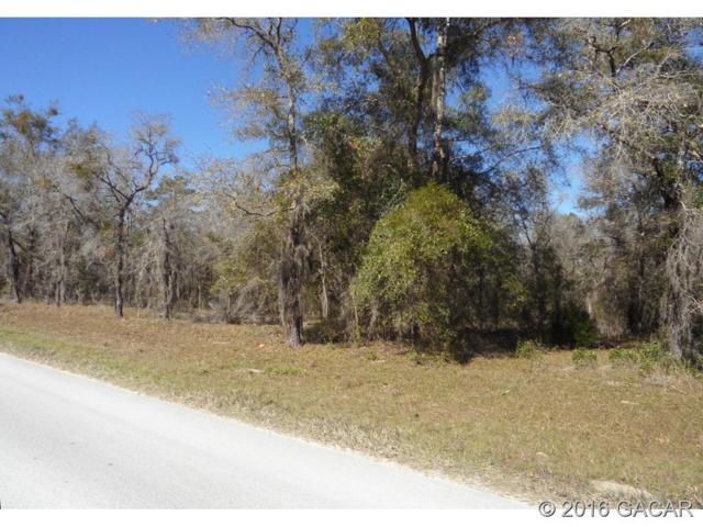 8581 NE 108th Lane, Bronson, FL 32621 (MLS #371697) :: Florida Homes Realty & Mortgage