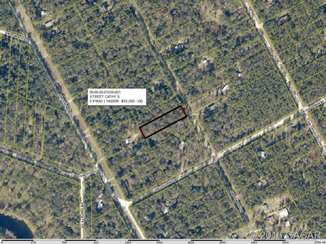 000 SW Newark Drive, Ft. White, FL 32038 (MLS #374734) :: Bosshardt Realty