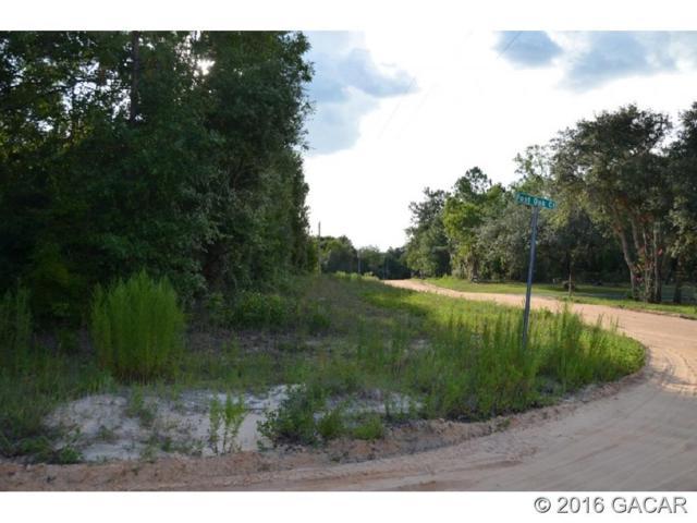 6763 Spanish Moss Drive, Keystone Heights, FL 32656 (MLS #376240) :: Bosshardt Realty