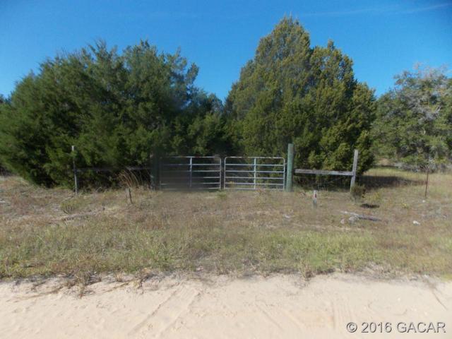 151 Melrose Landing Drive, Hawthorne, FL 32640 (MLS #377099) :: Florida Homes Realty & Mortgage