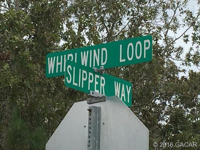 0000 Whirlwind Loop, Hawthorne, FL 32640 (MLS #378783) :: Thomas Group Realty