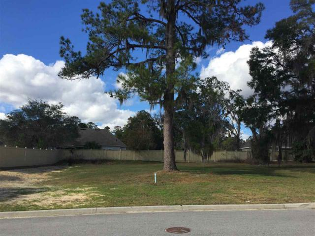 3956 NW 63rd Street, Gainesville, FL 32606 (MLS #401209) :: OurTown Group