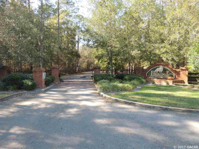 14407 NW 50th Place, Alachua, FL 32615 (MLS #401987) :: OurTown Group
