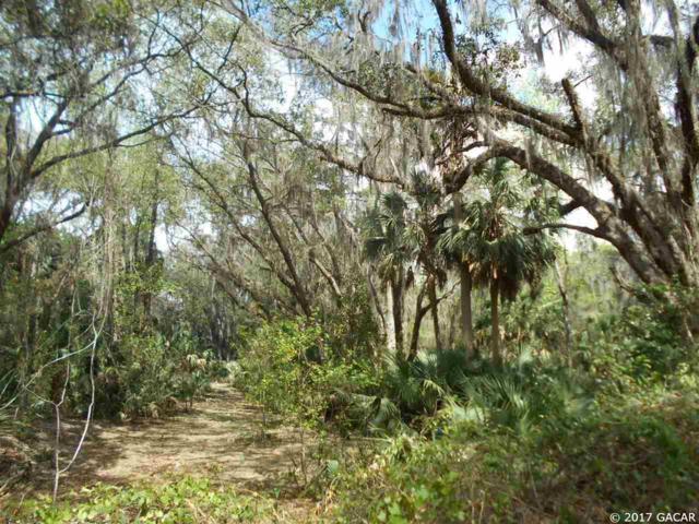 00 SE Wacahoota Road, Micanopy, FL 32667 (MLS #402933) :: Thomas Group Realty