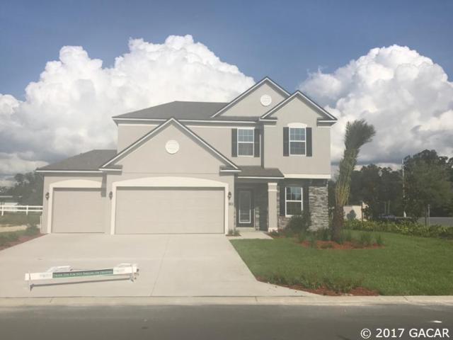 911 NW 250th Drive, Newberry, FL 32669 (MLS #405886) :: Bosshardt Realty