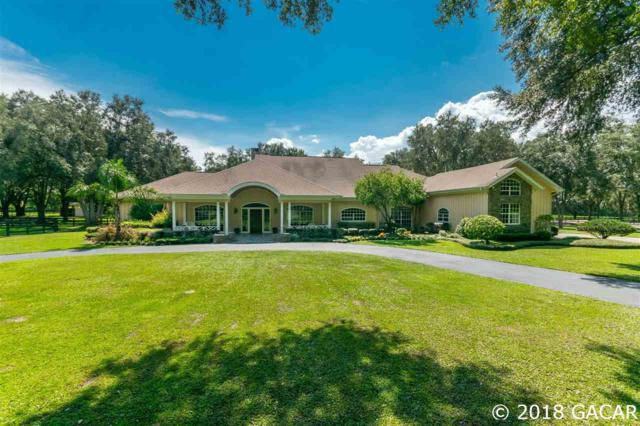 1715 NW 114th Loop, Ocala, FL 34475 (MLS #407734) :: Bosshardt Realty