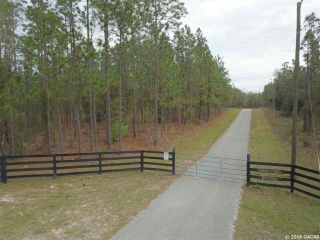 0000 SW Cr 337 Road, Newberry, FL 32669 (MLS #408505) :: Bosshardt Realty