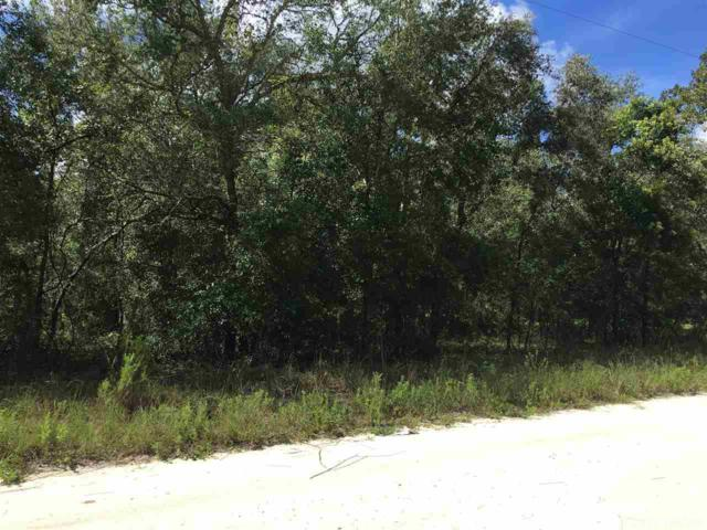 TBD NE 81 Street, Williston, FL 32696 (MLS #409859) :: Bosshardt Realty