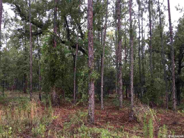 tbd SE 59th Place, Morriston, FL 32668 (MLS #410975) :: Bosshardt Realty