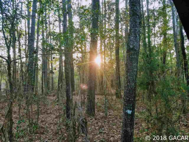LOT 18 NW County Road 1491, Alachua, FL 32615 (MLS #412130) :: Bosshardt Realty