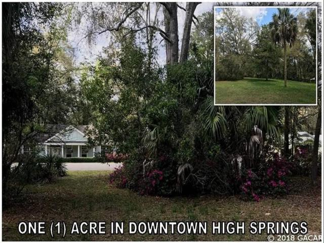 00 NW 244th, High Springs, FL 32643 (MLS #412409) :: Bosshardt Realty
