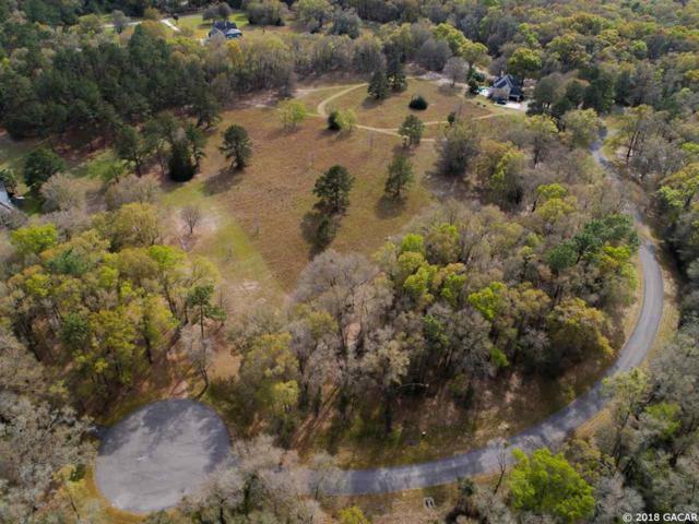 21567 NW 216th Lane, High Springs, FL 32643 (MLS #412421) :: Bosshardt Realty