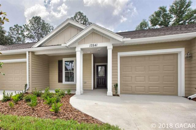 12841 NW 11th Place, Newberry, FL 32669 (MLS #413448) :: Rabell Realty Group