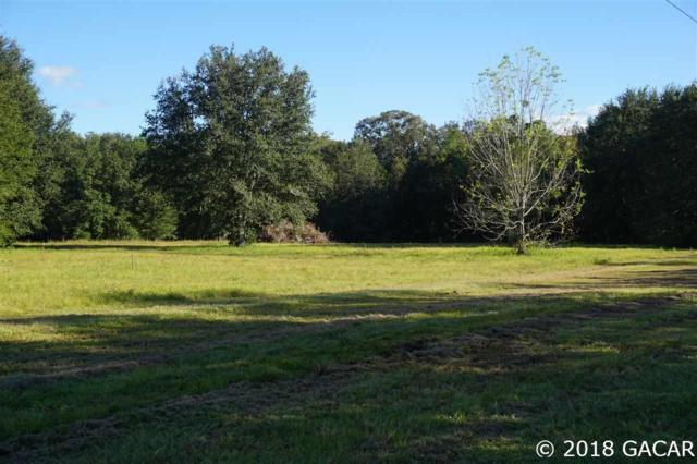 15502 NW 32nd Avenue, Jonesville, FL 32669 (MLS #413870) :: Pristine Properties