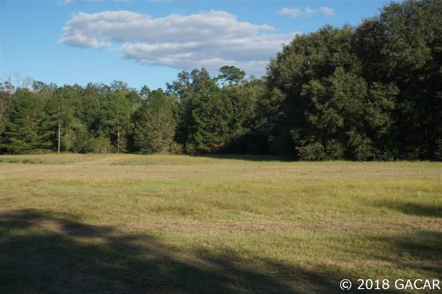 15502 NW 32nd Avenue, Jonesville, FL 32669 (MLS #413961) :: Pristine Properties