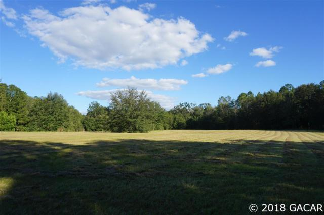 15502 NW 32nd Avenue, Jonesville, FL 32669 (MLS #413973) :: Pepine Realty