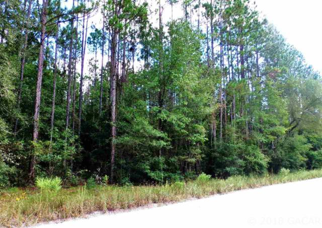 860 NW 62ND Court, Bell, FL 32619 (MLS #418810) :: Bosshardt Realty