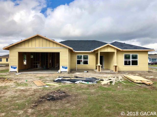 22882 NW 4th Place, Newberry, FL 32669 (MLS #419753) :: Thomas Group Realty