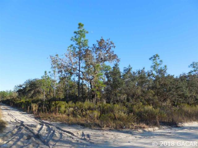 TBD NE 117 Terrace, Williston, FL 32696 (MLS #420109) :: Pepine Realty