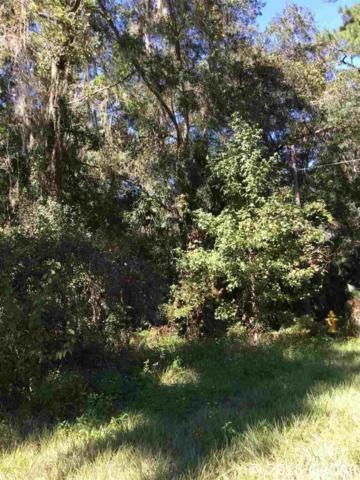 109 NE Evans Court, Micanopy, FL 32667 (MLS #420164) :: Rabell Realty Group
