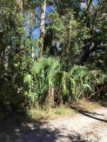 110 NE Evans Court, Micanopy, FL 32667 (MLS #420168) :: Rabell Realty Group
