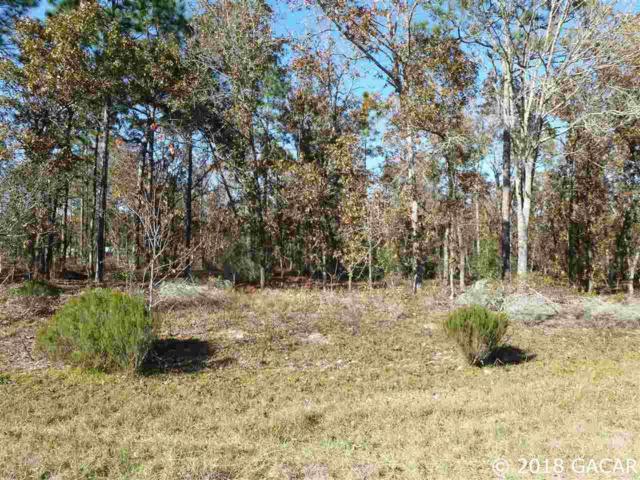 000 Silver Dollar Drive, Hawthorne, FL 32640 (MLS #420539) :: Bosshardt Realty