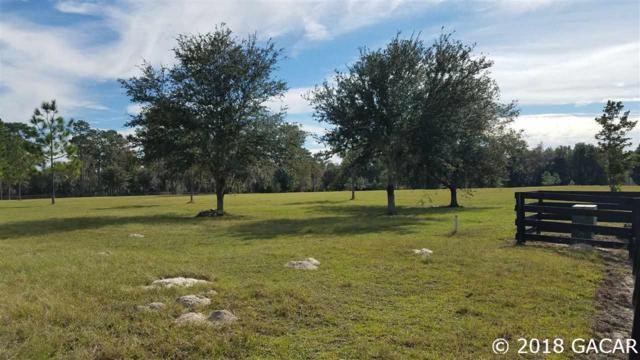 13537 SW 75th Terrace, Archer, FL 32618 (MLS #420834) :: Bosshardt Realty