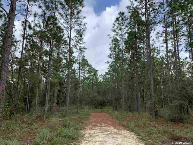 TBD SE 21st Place, Morriston, FL 32668 (MLS #429248) :: Bosshardt Realty