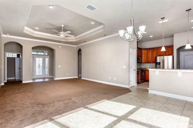16843 NW 165th Lane, Alachua, FL 32615 (MLS #431011) :: Better Homes & Gardens Real Estate Thomas Group