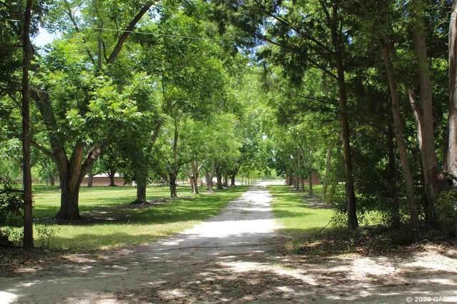 18338 NE 77th Lane, Hawthorne, FL 32640 (MLS #434816) :: Pepine Realty