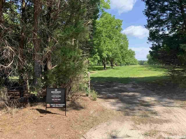 000000 NE 77th Lane, Hawthorne, FL 32640 (MLS #434819) :: Better Homes & Gardens Real Estate Thomas Group
