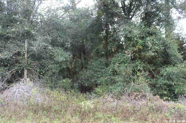 133 Ashley Lake Drive, Melrose, FL 32666 (MLS #439488) :: Better Homes & Gardens Real Estate Thomas Group