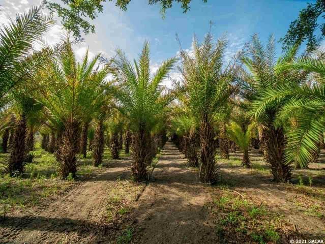 4782 NE 180th Boulevard, Jasper, FL 32052 (MLS #445326) :: Better Homes & Gardens Real Estate Thomas Group