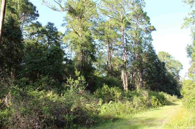 320 Calhoun Avenue, Florahome, FL 32140 (MLS #446298) :: Rabell Realty Group