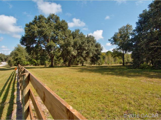 16513 SW 5th Place, Newberry, FL 32669 (MLS #371108) :: Bosshardt Realty