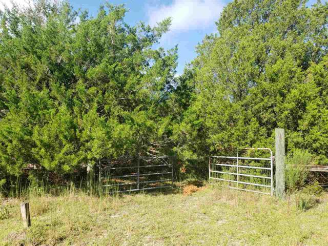 151 Melrose Landing Drive, Hawthorne, FL 32640 (MLS #377099) :: Bosshardt Realty
