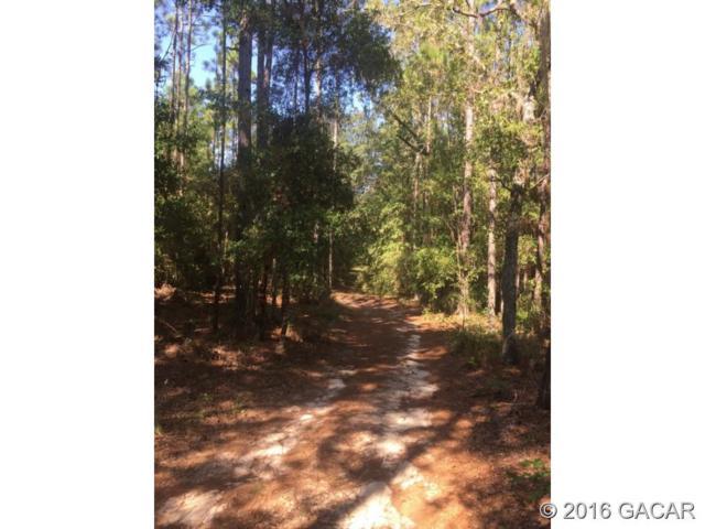 127 Slipper Way, Hawthorne, FL 32640 (MLS #377437) :: Bosshardt Realty