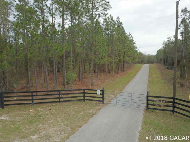 0000 SW Cr 337 Road, Newberry, FL 32669 (MLS #408505) :: Bosshardt Realty