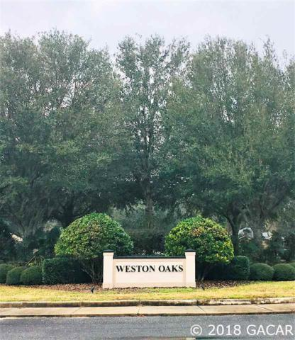 16223 NW 205TH Street, High Springs, FL 32643 (MLS #411008) :: Bosshardt Realty