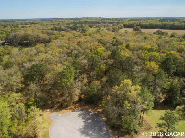 21324 NW 217TH Drive, High Springs, FL 32643 (MLS #412418) :: Bosshardt Realty