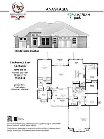 530 SW 125th Terrace, Newberry, FL 32669 (MLS #414176) :: Bosshardt Realty