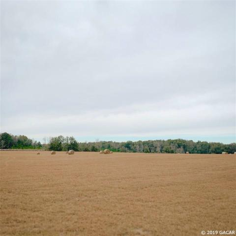 Lot 6 SW Bluebird Ct., Ft. White, FL 32038 (MLS #417728) :: Bosshardt Realty