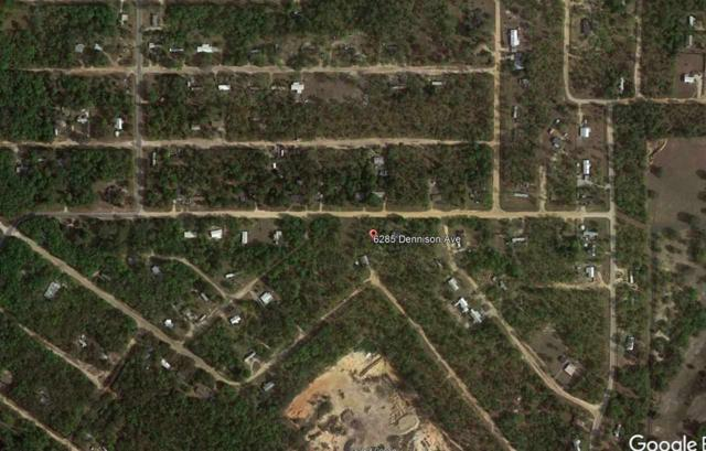 6285 Dennison Avenue, Keystone Heights, FL 32656 (MLS #418159) :: OurTown Group