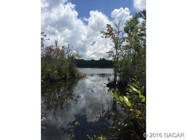 Lot24 NE 51 Avenue, Melrose, FL 32666 (MLS #331617) :: Better Homes & Gardens Real Estate Thomas Group