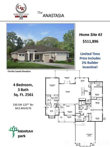 530 SW 125th Terrace, Newberry, FL 32669 (MLS #414176) :: OurTown Group